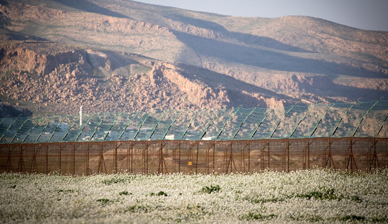 Wilf: Israel's Final Border
